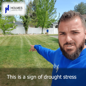 Worried your lawn might not be getting enough water?