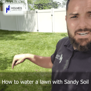How to water a lawn with Sandy Soil?